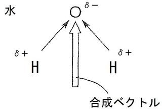 極性1.jpg